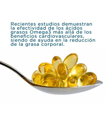 acidos-grasos-esenciales